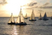 race-fleet-in-morning-sun