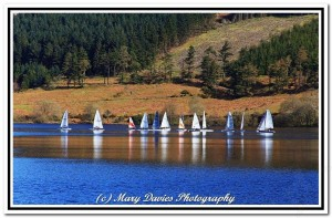 The whole fleet on a flukey Injebreck! - picture courtesy of Mary Davies